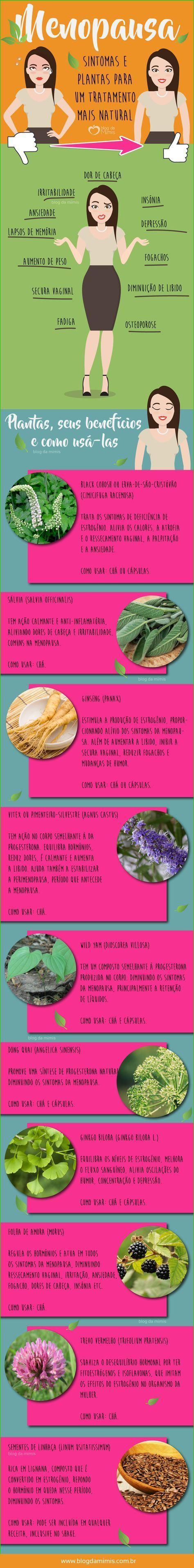 Plantas que aliviam os sintomas da menopausa - Blog da Mimis #menopausa #mulher #chá #tratamento #hormonal #hormônio #saúde #blogdamimis #infográfico