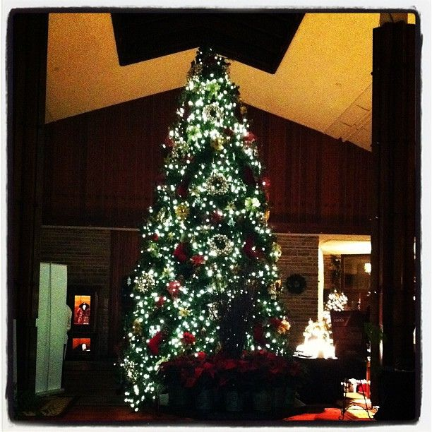The Jasper Park Lodge was very tastefully decorated for Christmas.