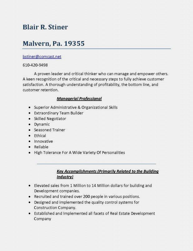 Basic Resume Examples Minimalist Resume Examples Resume Skills Resume Examples Basic Resume Examples