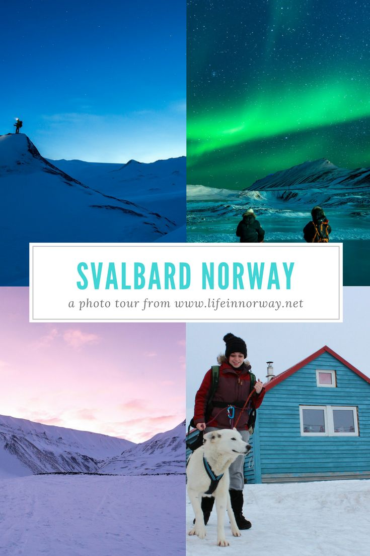 This is Svalbard: Norway's Arctic archipelago is home to more polar bears than people. Come with me on a photo tour.