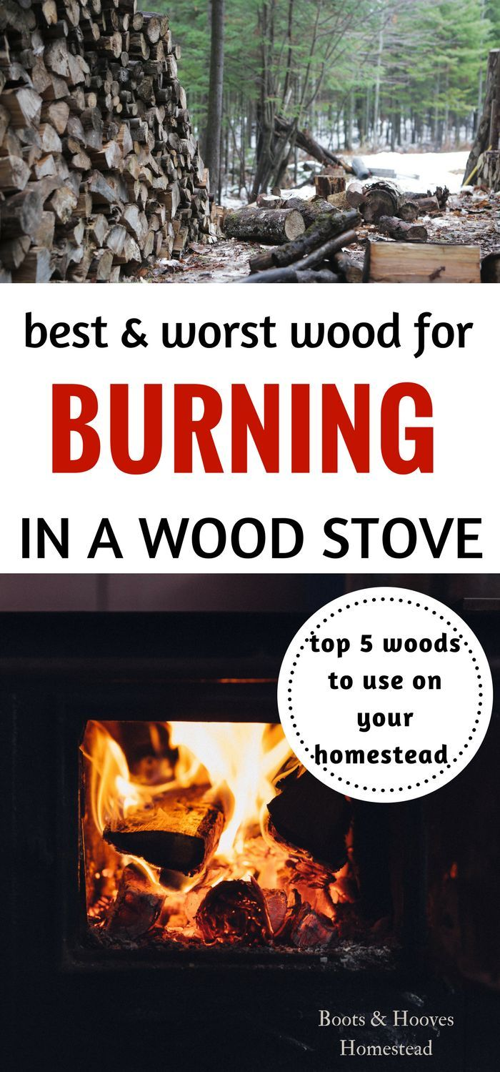 What is the best wood to burn in a wood stove? Here's 5 of the best woods and a few of the worst for burning in a wood stove.