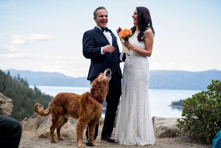 25 photos de mariage aussi spontanées quamusantes (PHOTOS)