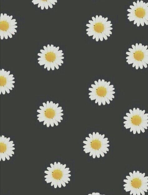 1000 images about phone backgrounds on pinterest iphone