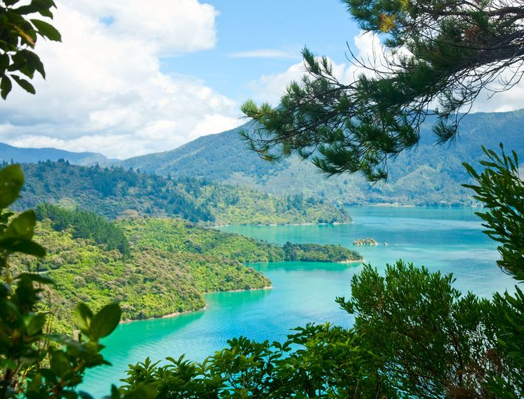 Queen Charlotte Track — New Zealand / 16 Astounding Backpacking Trips To Add To Your Bucket List