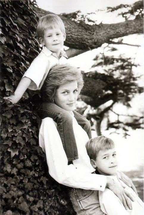 I love the photos of Diana and her sons.