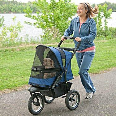 Best Dog Stroller  http://www.petcarrierverdict.com/best-dog-stroller/