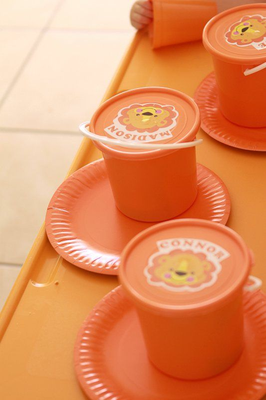 Lion party buckets - email jackie@babazoo.co.za