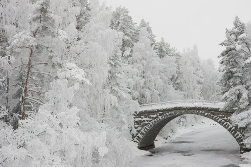 Silta (what a beautiful word)/  Bridge,  Finland -   photo by Juha Soininen