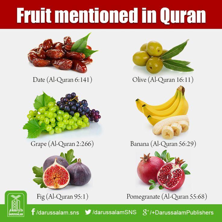 Fruit mentioned in Quran  • Date Fruit: Al-Quran, Surah Al-An'am (6), Verse 141 • Olive: Al-Quran, Surah Al-Nahl (16), Verse 11 • Banana: Al-Quran, Surah Al-Waqi'ah (56), Verse 29 • Pomegranate: Al-Quran, Surah Ar-Rahman (55), Verse 68 • Fig: Al-Quran, Surah At-Tin (95), Verse 1 • Grape: Al-Quran, Surah Al-Baqarah (2), Verse 266  12243316_756986974434420_9042099536178816194_n.png (800×800)