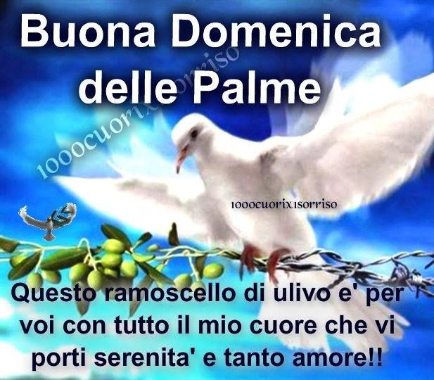This olive branch for you with all my heart with serenity and love.(Palm Sunday)