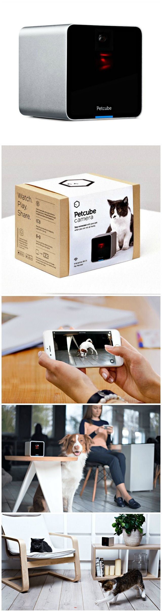 best pet gadgets images on pinterest pets dog accessories and