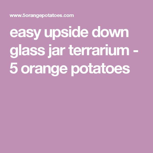 easy upside down glass jar terrarium - 5 orange potatoes