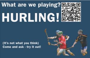 Hurling is a game for all seasons thanks to indoor fields available in northern climes.
