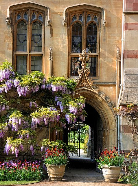 Chapel Passage with Wisteria/ Balliol College, Oxford