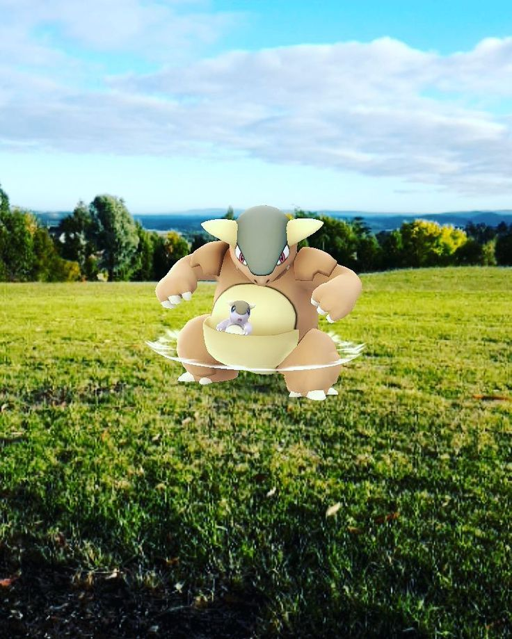 Smashed my early exercise and went on an adventure. I angered a Mama Roo along the way and found a good lookout to see the Yarra Valley. There has been real kangaroos around this area too  #mama #roo #pokemongo #exercise #adventure #yarravalley #melbourne #eastmelbourne #kangaroo #kangaskhan #멜버른 #호주 #포케몬고  #포케몬 #wanderlust #success #valley