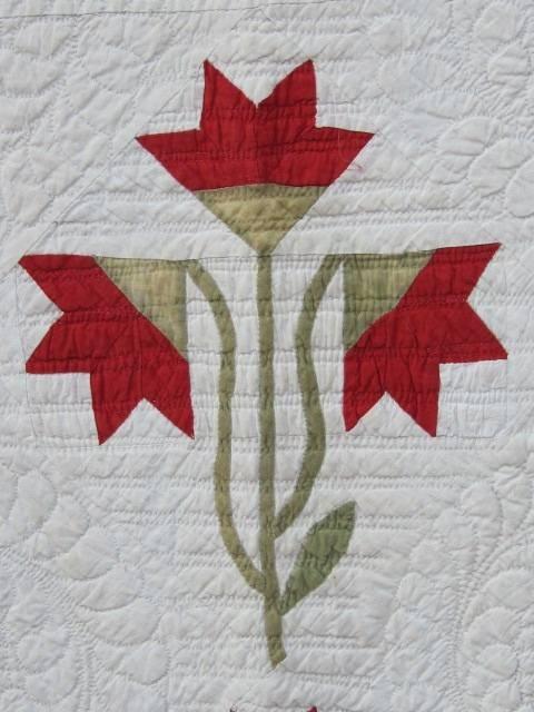 59 best Carolina Lily Quilts & Blocks images on Pinterest | Quilt ... : marie miller quilts - Adamdwight.com