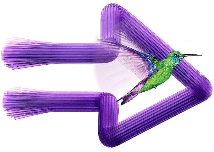 TELUS PureFibre optic Internet and TV in your area | TELUS PureFibre | TELUS.com