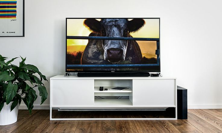 Looking for the best vegan documentaries out there? We got you covered with this ultimate guide to vegan documentaries, short films, and speeches.