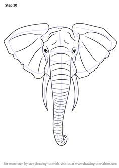 Step-by-step how to draw an elephant head.