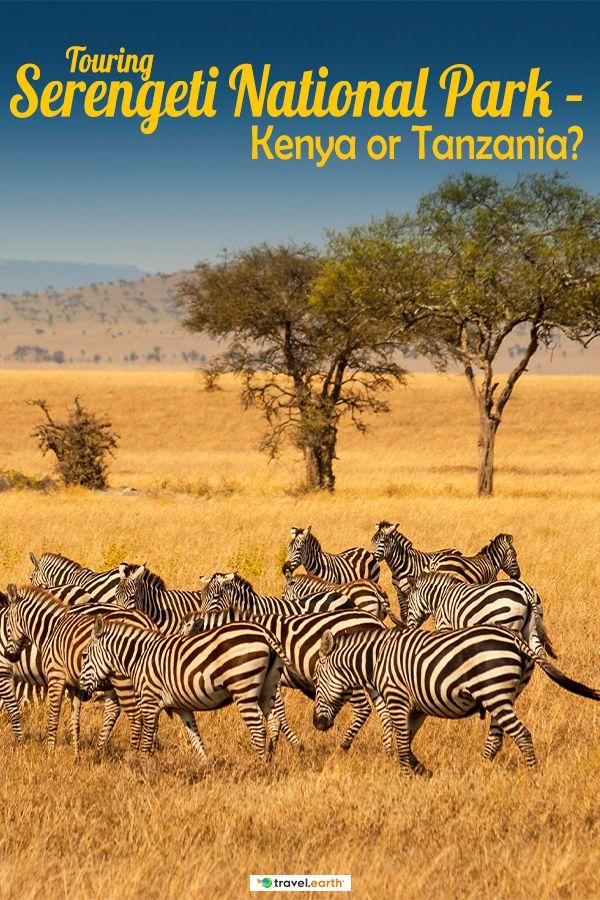 Touring Serengeti National Park Kenya Or Tanzania Serengeti