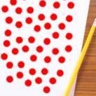 Shichida 65 day Math Dot Flashcards