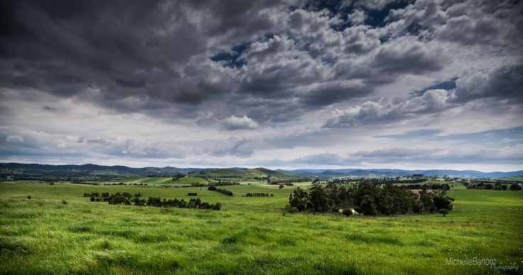 A warm cloudy day in the Yarra Valley