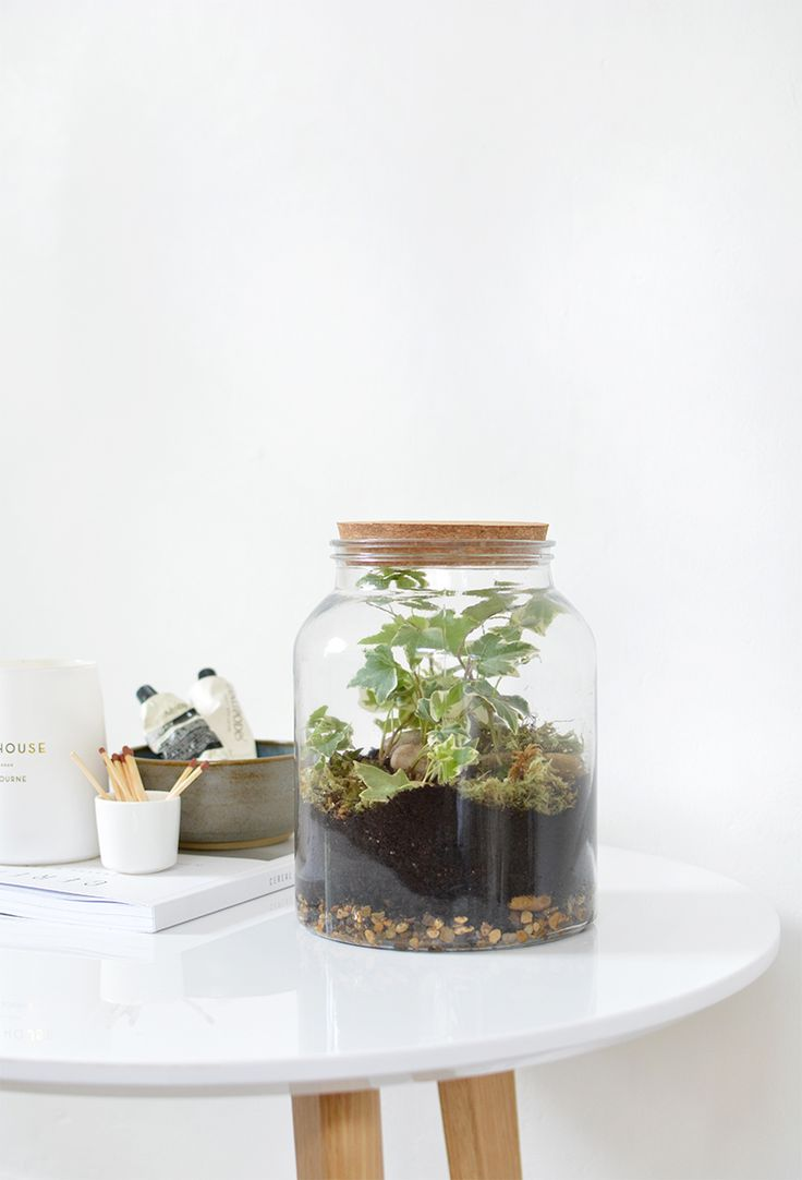DIY   tasselled planter