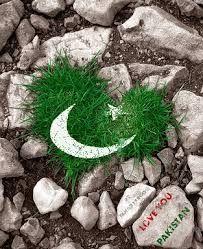 Image result for pakistan wallpaper