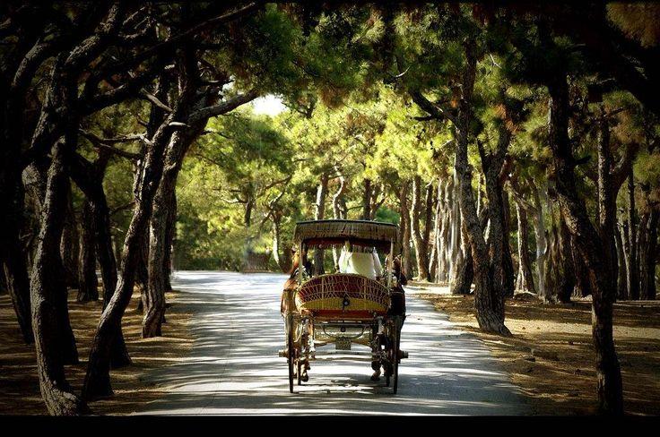#seyahat http://www.tatilhome.com.tr/buyukada.html  Prens adalarının en büyüğü Büyük adaya kaçmaya ne dersiniz?
