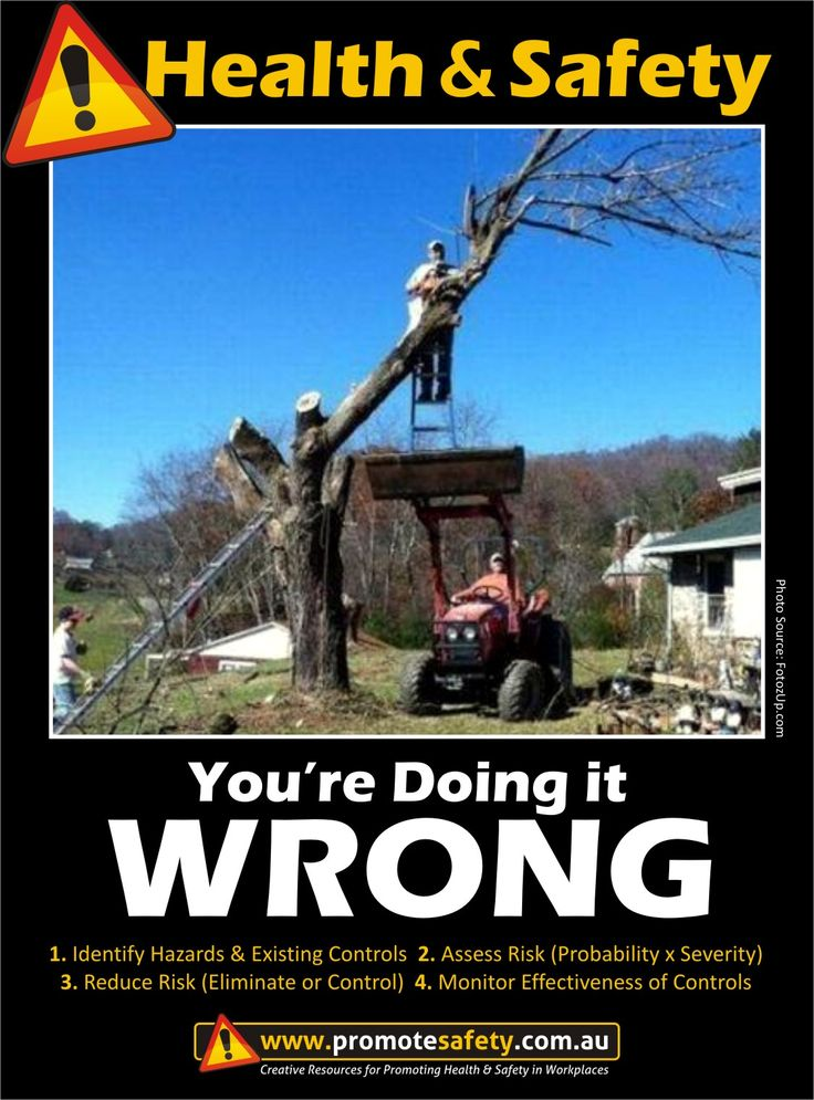 Health & Safety - You're Doing it Wrong. Tree cutting. Work at Height