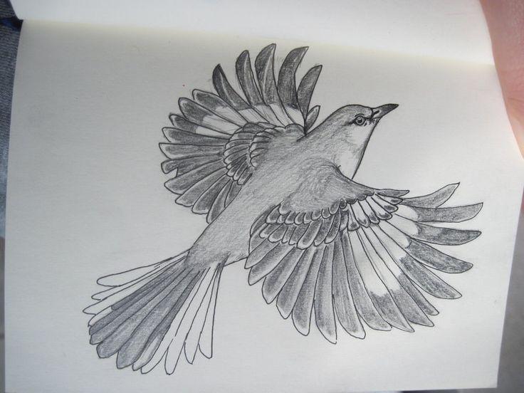 Image result for mockingbird flying drawing