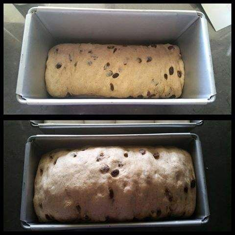 Recipe JUMBO 900G FRUIT LOAF & ROLLS by ThermomummaLailahRose - Recipe of category Breads & rolls