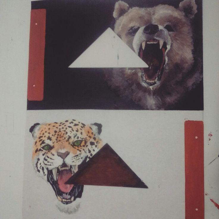 #oso #tigre