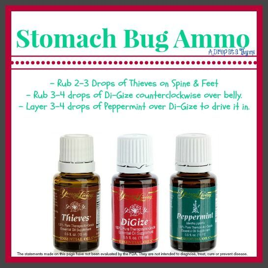 Young Living Essential Oils for Stomach Bug/Flu