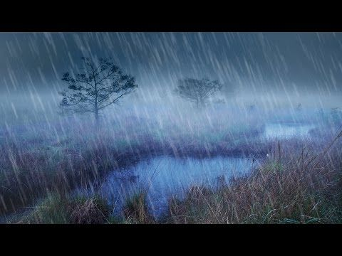 Rain + River Night Ambience | Nature White Noise Study or Sleeping Aid | 10 Hours Stress Relief - YouTube