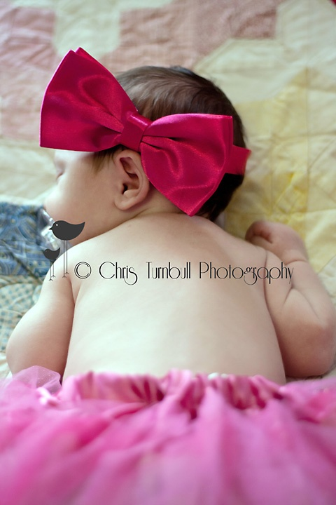 addison charlotte lee image 42. please do not alter, copy, edit, save, print, crop or remove my copyright watermark from this image. if you like these images and wish to see more then please like the Chris Turnbull Photography facebook page and share with family and friends. all images are © www.christurnbullphotography.com