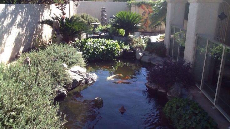 256 Best Images About Water On Pinterest Gardens Garden