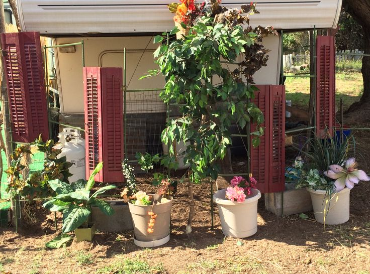 Artificial Plants Outdoor Privacy Screens