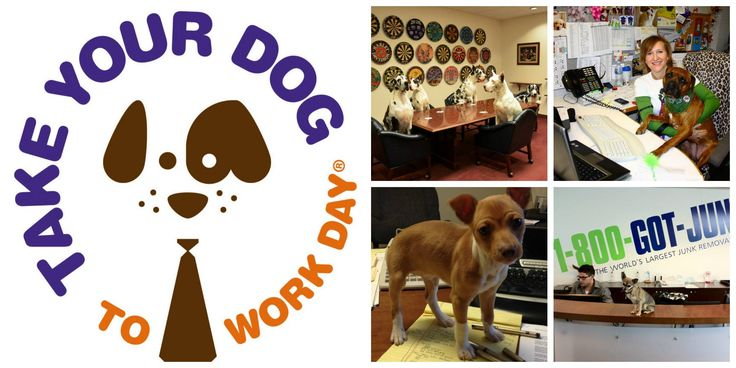 We know so many folks who already bring their dogs (and cats) to work every day. So here's the challenge to some of our dog-loving friends, including Bark Life Market and More, Dog-Mania & Cats, Fluffy Puppies, Einstein Pets, Pawsitively Posh Pooch, Pet Food Warehouse, Pets 4 Christ Inc, Susan Nice, Kris Logan, Suzanne O'Barr, Richard Gonzmart, Fuzzie Buddies Pet Resort, Kristen Triplett at Pasadena Pet Motel, K9 Partners for Patriots, Inc., Pet Styles by Jennifer, Patricia Clifton of The…