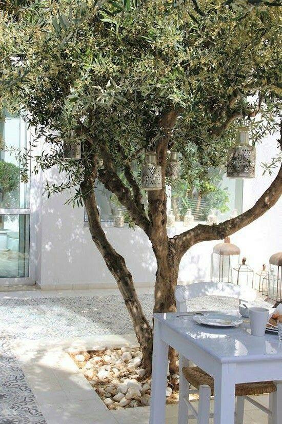 Portugese tegels olijfboom