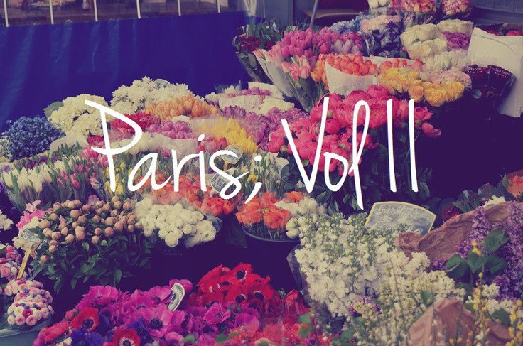 Paris Highlights: Vol II