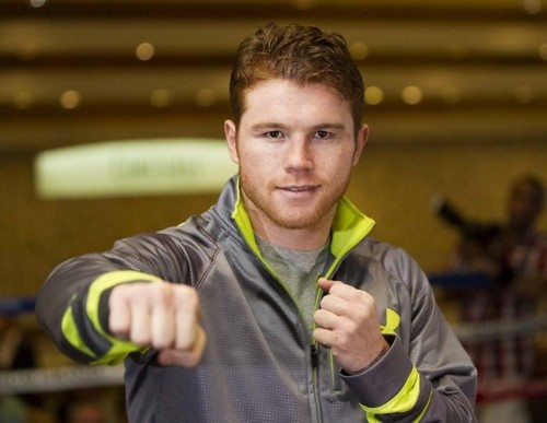 Canelo Alvarez Wallpaper