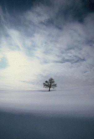 Dicembre 2011 - Franco Fontana #Paesaggi dell'anima - SR district #Alessandria