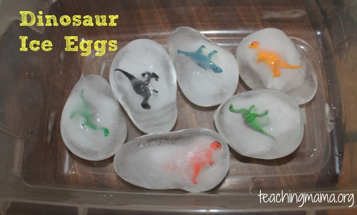 Dinosaur Ice Eggs - Fun way to cool off the kid pool in the summer?  Maybe stick bugs and butterflies in the balloons?