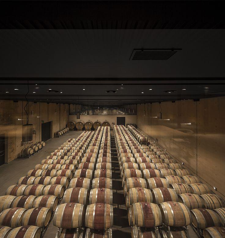 Alvisi Kirimoto Opens The Bulgari Winery In Tuscany #taninotanino  #vinosmaximum