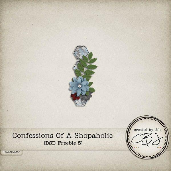 confessions of a shopaholic essay