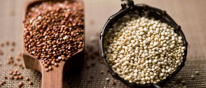 6 amazing quinoa health benefits, we have provided for your references of having healthy body.
