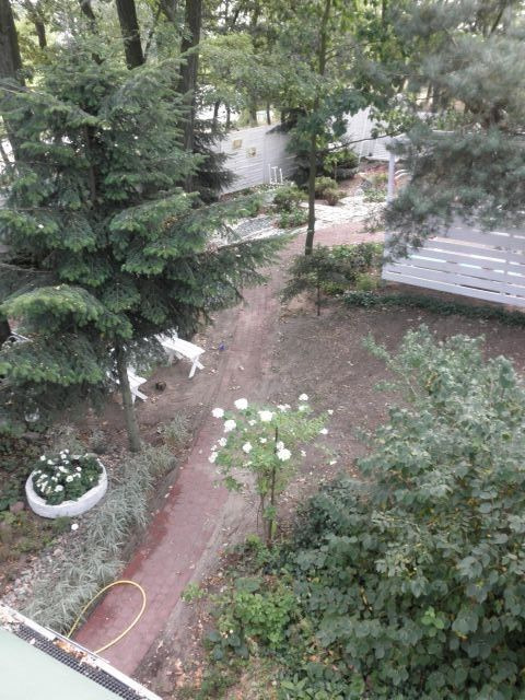 widok z balkonu ----------------------------- view from the balcony