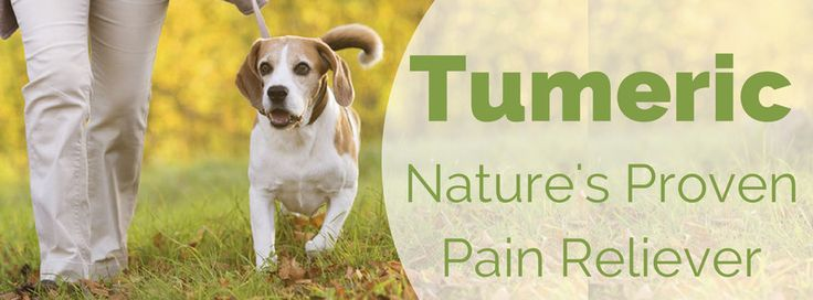 Tumeric Nature's Pain Reliever - interesting and needs me to research this!
