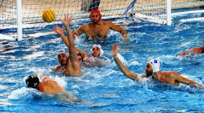 (adsbygoogle = window.adsbygoogle || ).push({});  Watch Cluj vs Steaua Bucuresti Water Polo Live Stream   Live match information for : Steaua Bucuresti Cluj Superliga Live Game Streaming on 29-Oct.  This Water Polo match up featuring Cluj vs Steaua Bucuresti is scheduled to commence at 08:00 GMT - 13:30 IST.   #Cluj 2017 Game Live #Cluj 2017 Superliga #Cluj 2017 Water Polo #Cluj 2017 Water Polo Betting Predictions #Cluj vs Steaua Bucuresti 2017 Online scores #Cluj vs